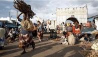 Harar City